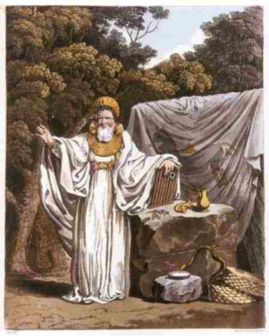 """Imaginative illustration of 'An Arch Druid in His Judicial Habit' from """"The Costume of the Original Inhabitants of the British Islands"""" (1815)."""