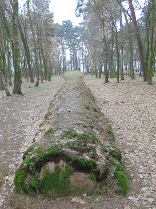 100-meter-long burial mound found in Poland.