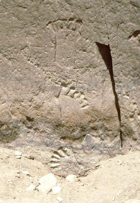 6-toed footprints behind Pueblo Bonito, Chaco Canyon, NM.