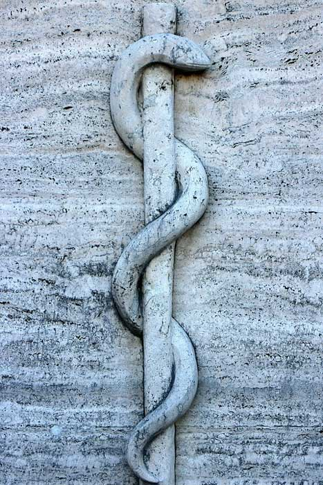 A snake entwined staff, the symbol of medicine.