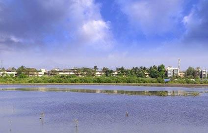 View of Amol Nagar Building Complex in Naigaon, India
