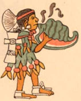 "Figure 1. An Aztec conch shell trumpeter called a ""quiquizoani"" in Nahuatl from the Codex Magliabecchi"