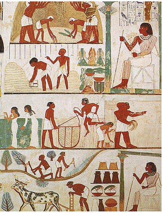Ancient Egyptian workers plowing the fields, harvesting the crops, and threshing the grain. (Norman de Garis Davies / Public Domain)