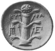 Ancient silver coin from Cyrene depicting a stalk of Silphium