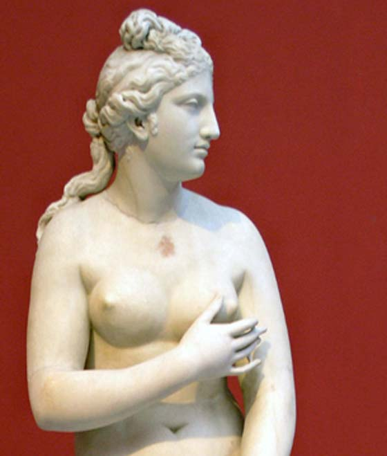 Aphrodite/Venus. Parian marble, Roman copy of the 2nd century CE after a Greek original of the 4th century BC (Marsyas/CC BY 2.5)