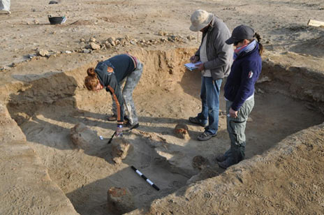 Archaeologists taking measurements in the animal cemetery