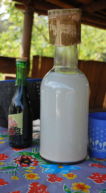 Bottle filled with pulque - Mexico