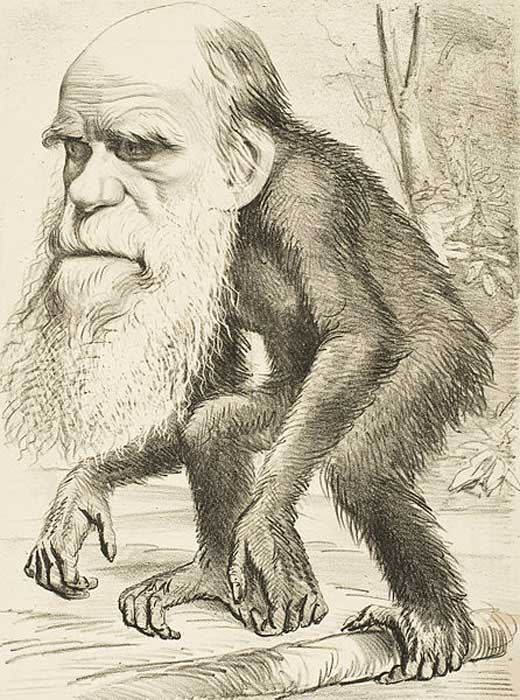 As evolution became widely accepted in the 1870s, caricatures of Charles Darwin with an ape or monkey body symbolized evolution.