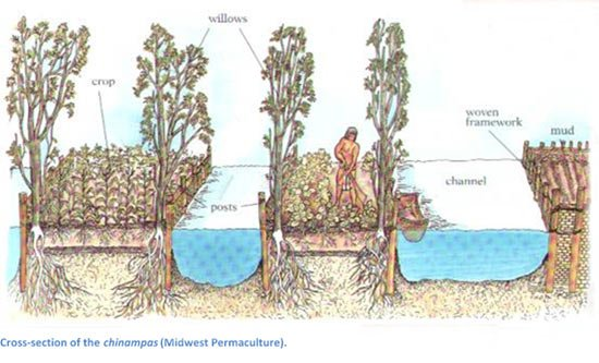 Chinampas The Floating Gardens Of Mexico Ancient Origins