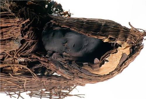 A Chinchorro mummy
