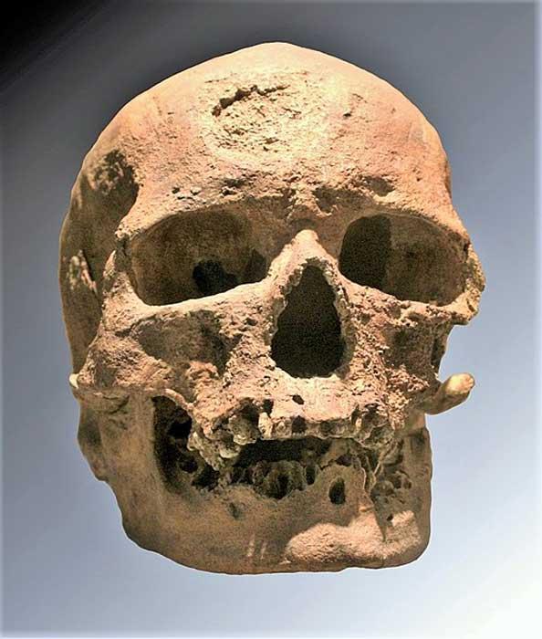 Cro-Magnon 1 skull.