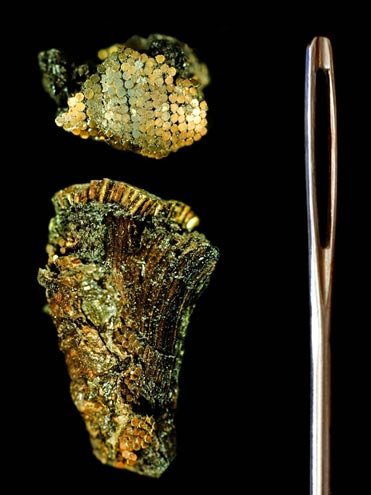 The astounding Bronze Age microscopic gold work from around Stonehenge