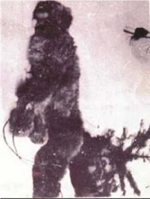 Detail of bigfoot in the 1894 photo. (Author provided)