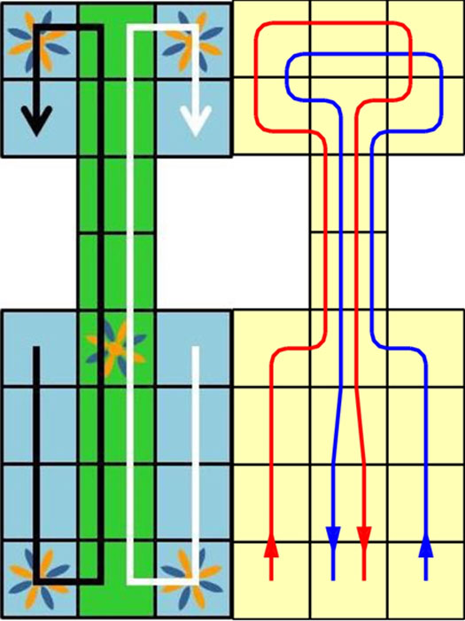 "On Left – Diagram showing the most likely direction in which the players race to move their pieces off the board, with ""safe"" spaces shown in blue and ""combat"" spaces shown in green; On Right – Game Path less likely, but possible, course in which the players double back over four squares of the middle section, thus making the game longer. (Left, Public Domain; Right, CC BY-SA)"