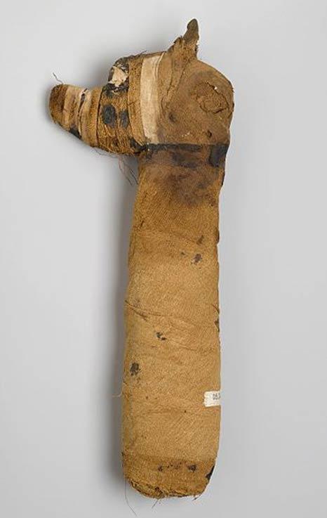 Dog Mummy, 305 B.C.E.-395 C.E. Animal remains, linen, painted. Brooklyn Museum