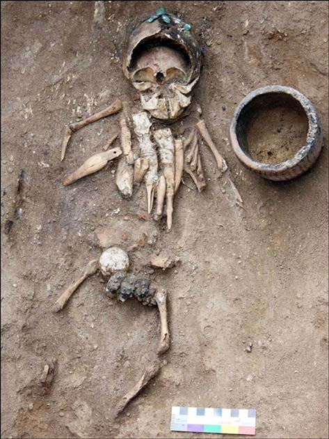 Eight dolls in total were contained in the grave of a child. (Siberian Times)