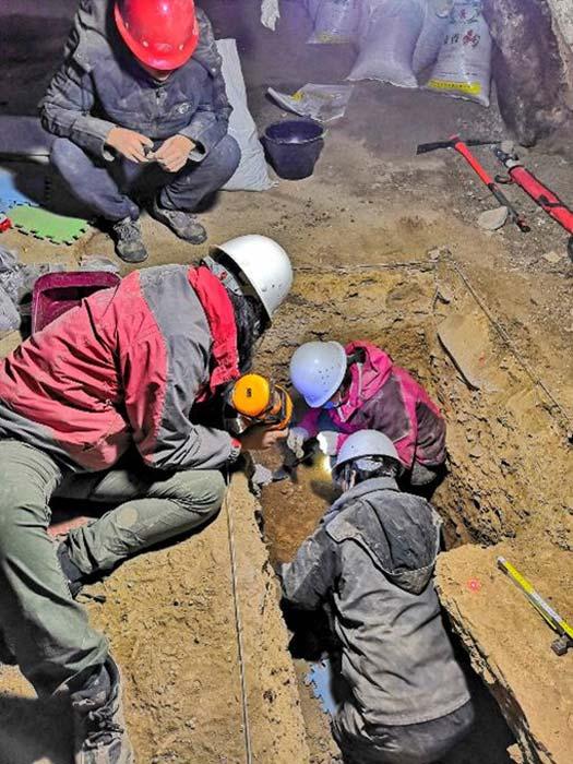 Excavating in the Baishiya Karst Cave. (Dongju Zhang, Lanzhou University)