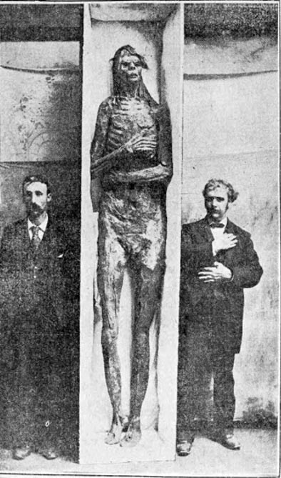 igure 12. The San Diego giant was purchased by the Smithsonian for $500 (over $14,000 in today's money) in 1895, although they later claimed it was a hoax.