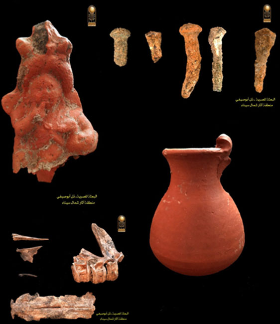 Fishbones, nails, and pottery have all been found at the site. (Ministry of Antiquities)