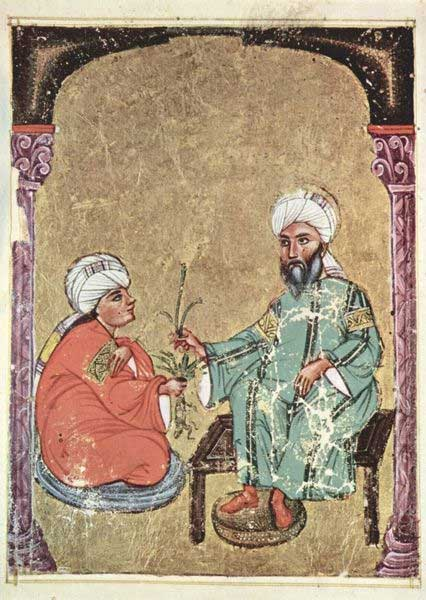 Folio from an Arabic manuscript of Dioscorides, 'De materia medica', 1229. (Public Domain)