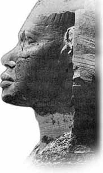 Frank Domingo. Forensic reconstruction on the face of the Sphinx, by Frank Domingo, NY Police Department. (Image via author)