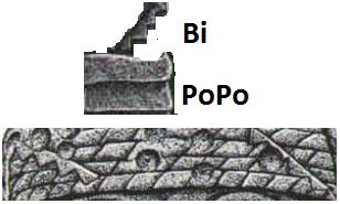 Glyphs for Bi PoPo. (Top) San Lorenzo Monument 3 Headband. (Bottom) (Author provided)