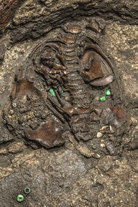 Green jadeite beads from Guatemala and blue beads of an unknown origin were found along with the skeleton. (Mirsa Islands/Proyecto Templo Mayor, INAH)