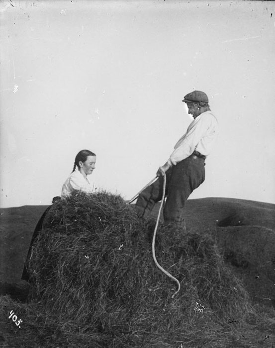 Hay being bound in bales at Arnarvatn, 1907.