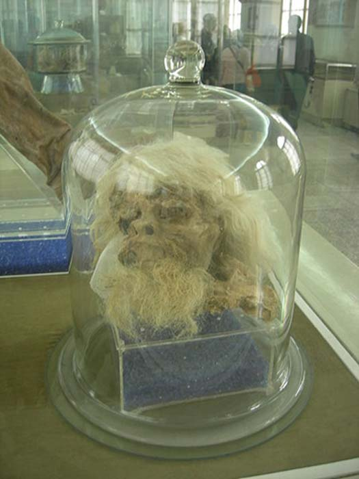 Head of Saltman 1 on display at National Museum of Iran in Tehran.