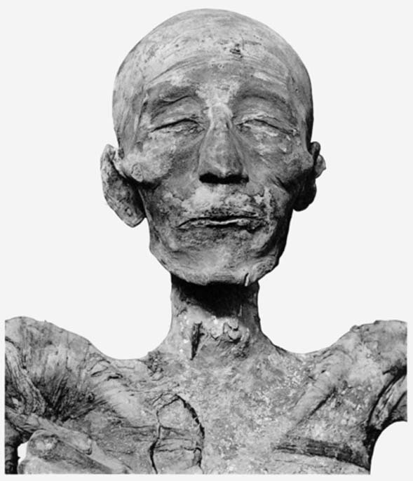 Head of mummy of pharaoh Merneptah. These mummies didn't start out quite so emaciated. (Public Domain)