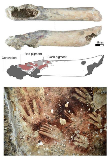 Hollow bone tube (top) with red and black pigments, made from the long bone of a bear cuscus, may have been used as an 'air-brush' to create human hand stencils on rock surfaces (bottom). ((Top) Michelle Langley (bottom) Yinika Perston)