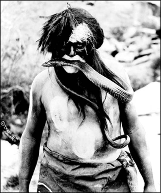 Hopi Snake dancer, 1924, northern Arizona (Public Domain)