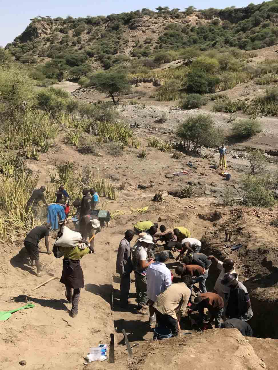 Excavations at Ewass Oldupa uncovered the oldest Oldowan stone tools ever found at Oldupai Gorge, dating to ~2 million years ago, and also unearthed fossils of mammals, reptiles and birds. (Michael Petraglia)