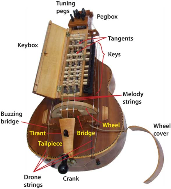 Illustration of the parts of a hurdy gurdy.
