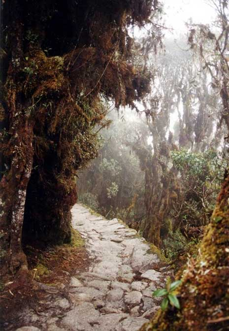 Part of the Inca Trail system (Public Domain)