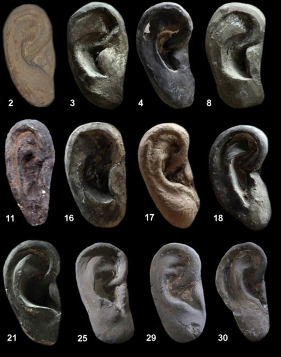 Individual clay ear shapes and styles represented