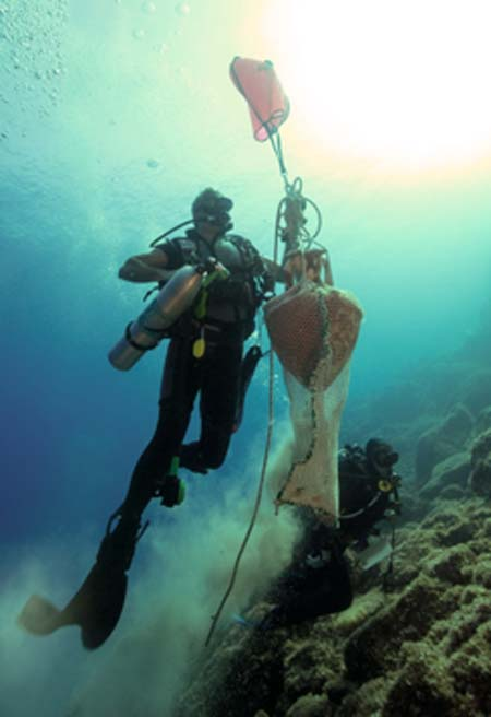 Intact ancient amphora brought to the surface as part of the 2019 Ephorate of Underwater Antiquities study. (Hellenic Ministry of Culture and Sports)