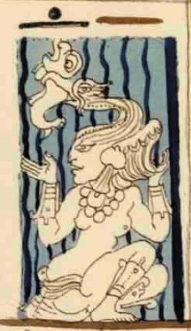Lady Cormorant, Maya Goddess Muwaan Mat from Dresden Codex