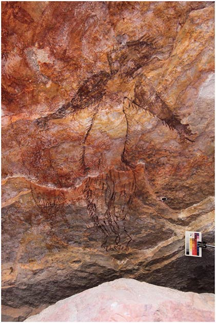 Another example of Maliwawa rock art was discovered at the Awunbarna site showing an indeterminate Maliwawa human with lines suggestive of hair all over its body. (P. Taçon / Australian Archaeology)