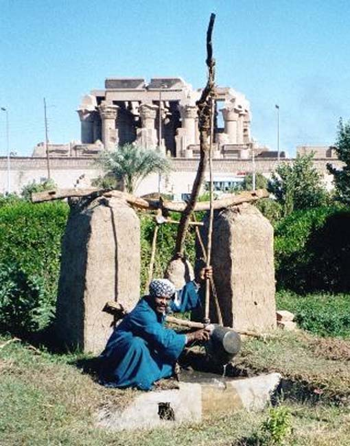 Man and shadoof/shaduf, Kom Ombo, Egypt.