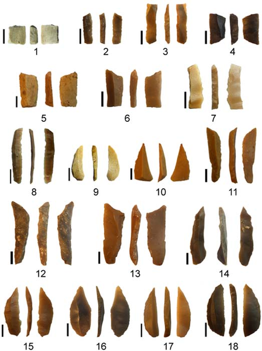Microlithic tools found in association with the limestone artifacts.