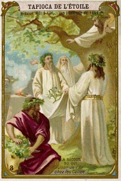 Mistletoe was revered as a symbol of fertility by Celtic druids. Credit: Archivist / Adobe Stock