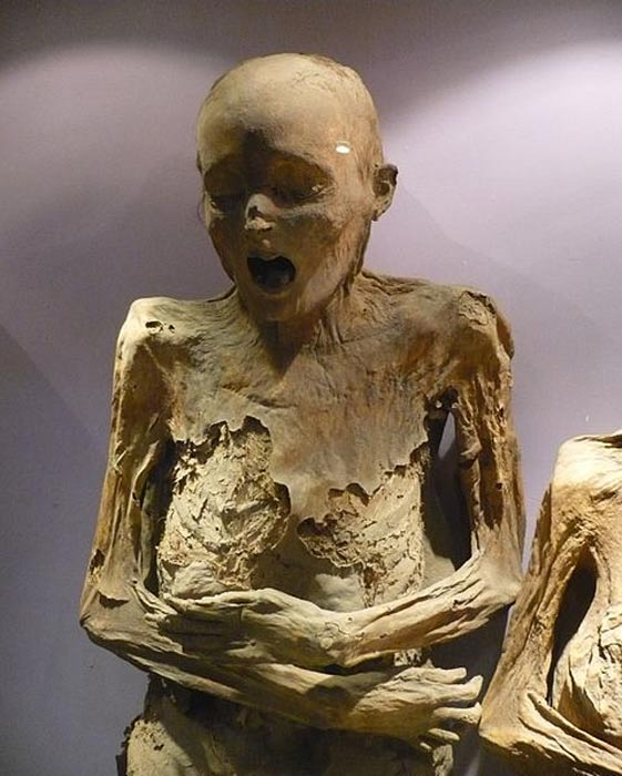 A mummy found in the Mummy Museum in Guanajuato, Mexico.