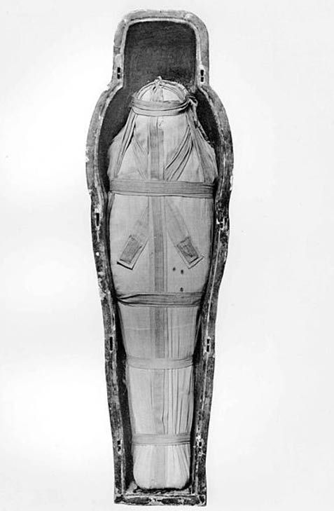 Mummy of Isetemkheb D found in DB320.