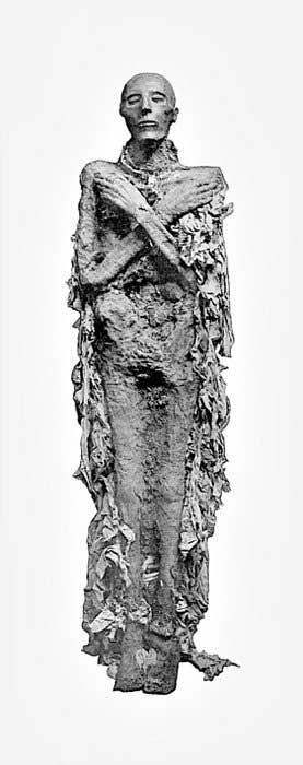 Mummy of Pharaoh Seti I.
