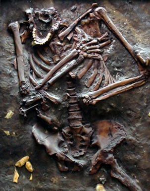 The Neanderthal remains found in the Kebara Cave, Israel