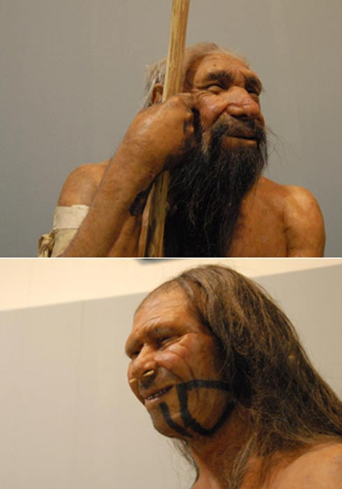 Reconstructions of Neanderthal and Homo sapien