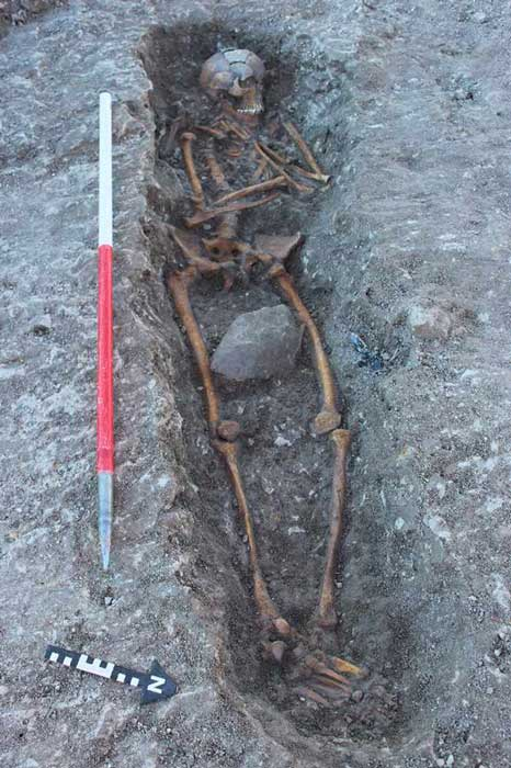 One of the skeletons found during the dig at Oxfordshire. (Thames Water) Archaeologists believe the bodies may be evidence for human sacrifice.