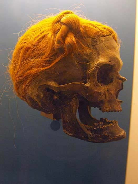 Osterby Man with hair tied in a Suebian Knot. At Archäologisches Landesmuseum. (CC BY 3.0)