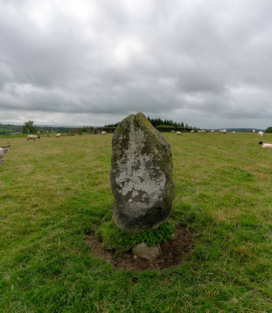 Outlier stone at the Beltany stone circle.